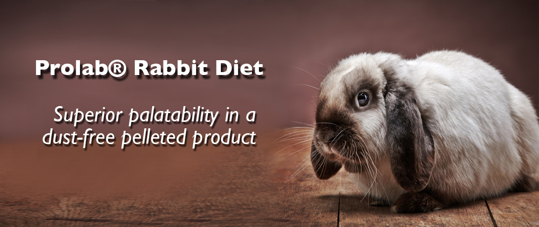 ProLab Rabbit Diet