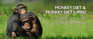 High Protein Monkey Diet